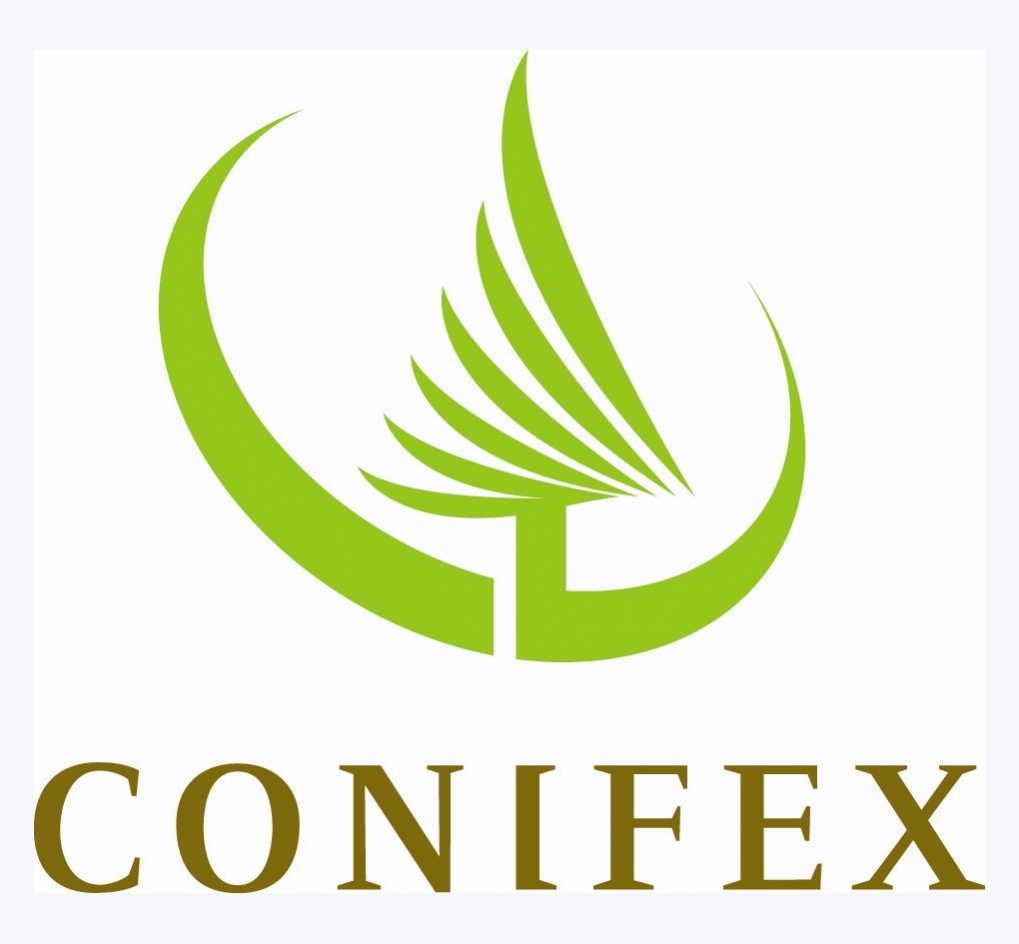 5.IntBeautyDes - Conifex logo