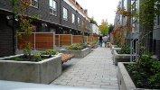 Canvas Kitsilano Vancouver, BC garden